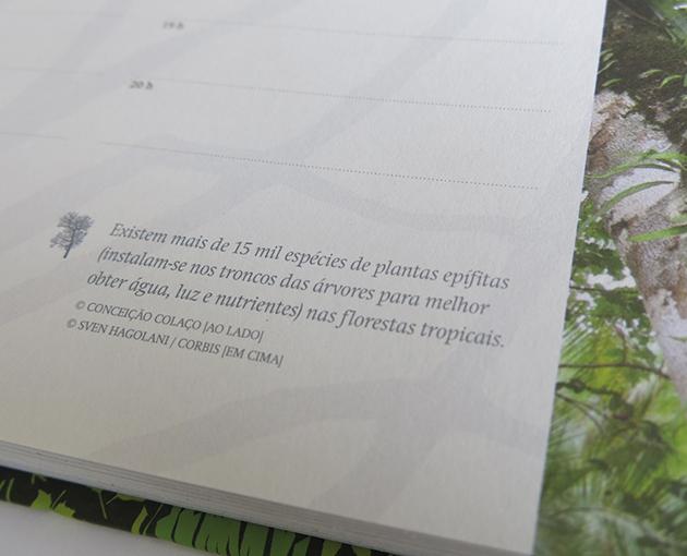 Ctt agenda 2011 2